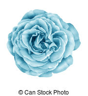 Clip Art of Blue turquoise Rose Flower.