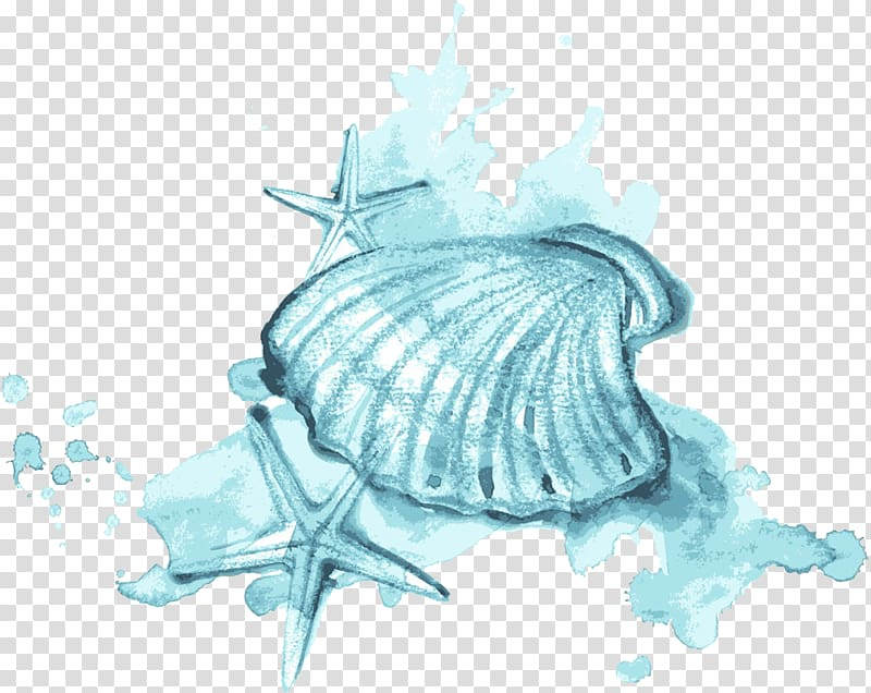 Seashell Watercolor painting Illustration, Blue watercolor.