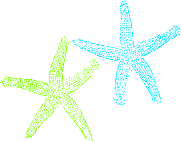Turquoise starfish clip art at vector clip art online image #9449.