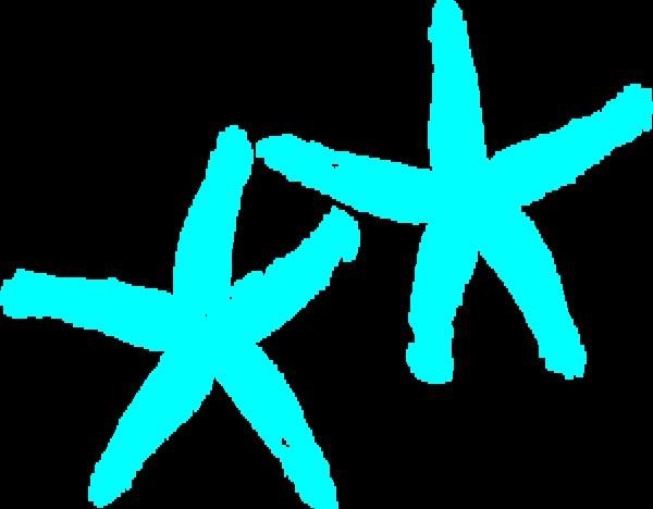 Turquoise Starfish Md.