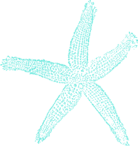 Single Starfish Turquoise Clip Art at Clker.com.