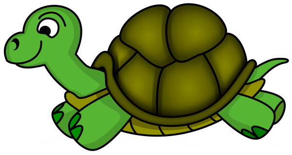 Turtle animal clipart.