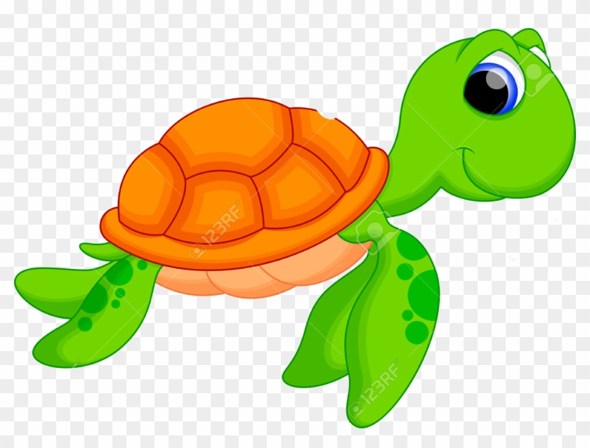 Turtle Vector Png.
