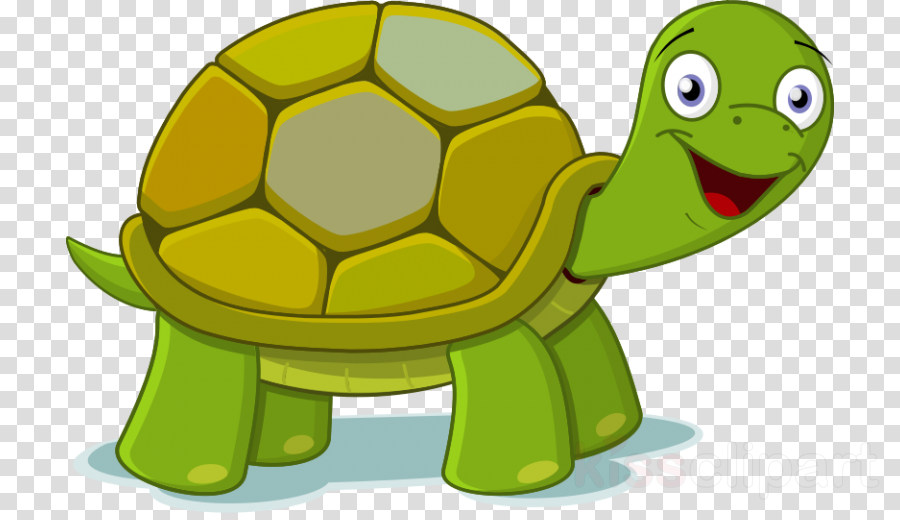 Turtle, transparent png image & clipart free download.