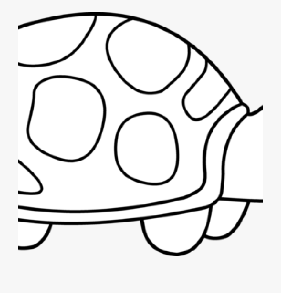 Turtles Clipart Outline.