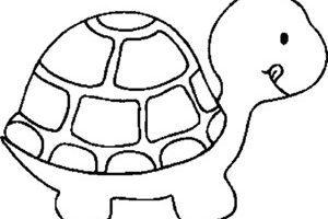 Turtle clipart outline » Clipart Portal.