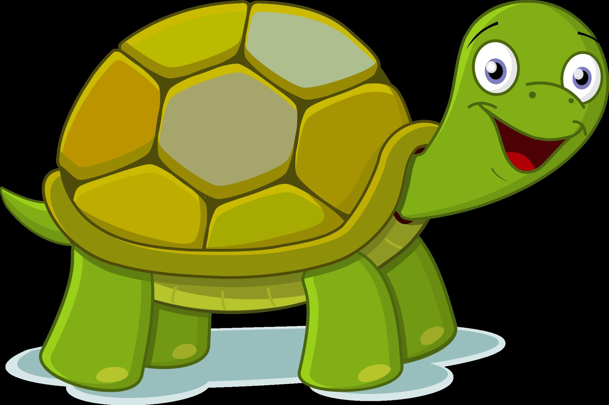 Turtle Clipart.