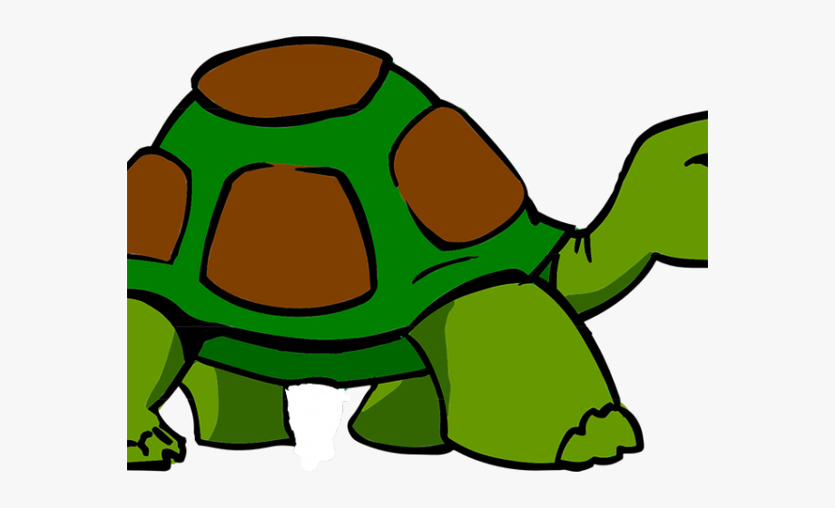 Cartoon Picture Of A Turtle.
