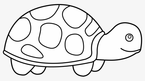 Turtle Clipart Snake.