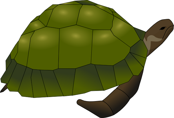 Turtle Clip Art at Clker.com.