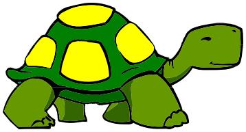 turtle walking spot color.