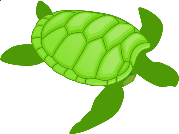 turtle clip art #38.