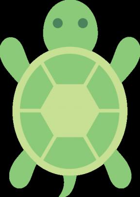 Cartoon Tortoise Shell Image.