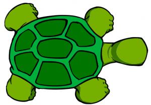Turtle 2 Clip Art Download.