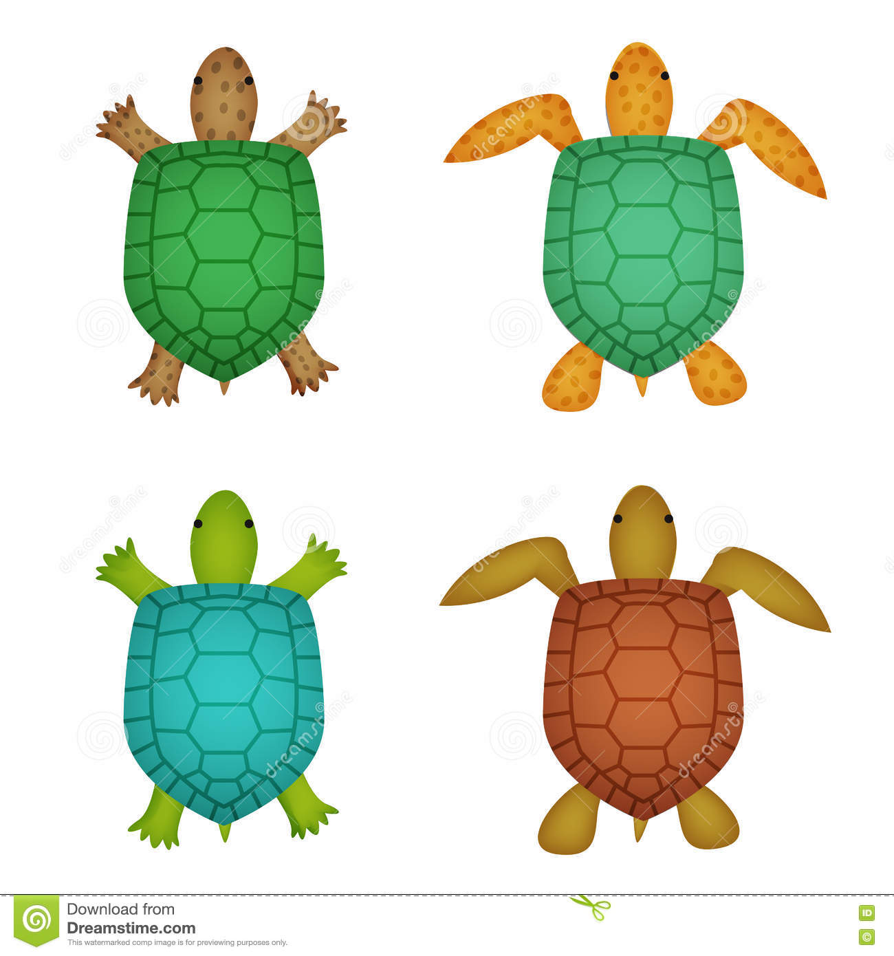 Turtle And Tortoise In Realistic Style, Top View Stock Vector.