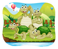 Turtles Family Stock Illustrations.