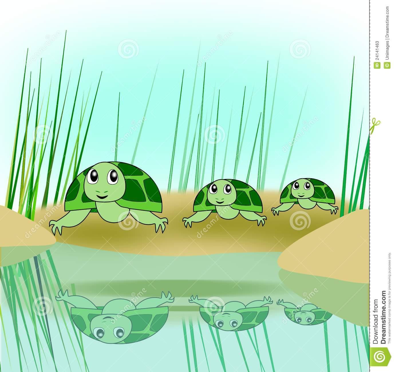 Turtle Family Stock Photos.