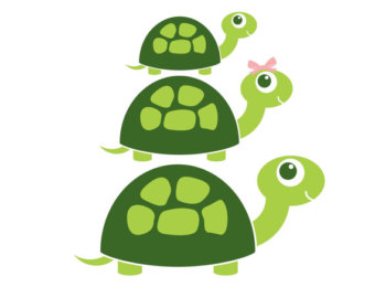 Turtle family.