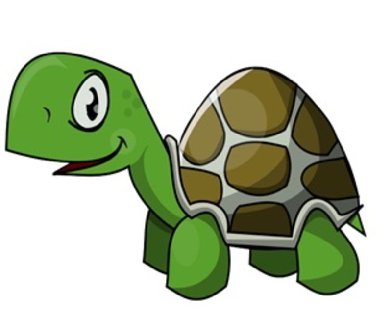 Turtlehead Multiplication.