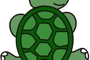 Turtle head clipart 3 » Clipart Portal.