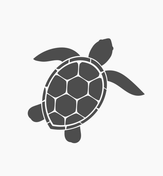 Sea Turtle Clipart & Free Sea Turtle Clipart.png Transparent.
