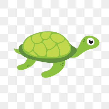 Cartoon Turtle PNG Images.