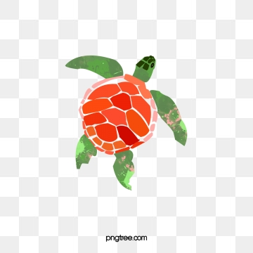Turtle Png, Vector, PSD, and Clipart With Transparent.
