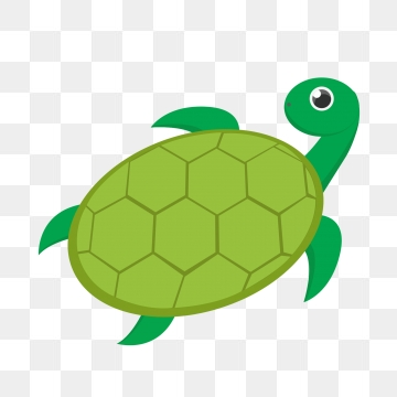 Turtle PNG Images.
