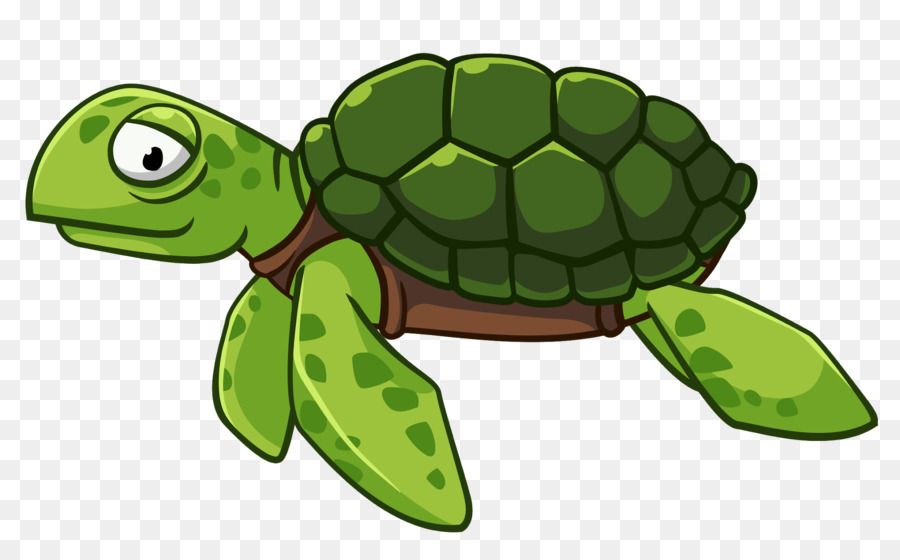 Sea Turtle Background.