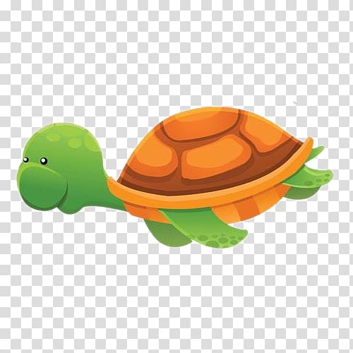 Green and brown turtle illustration, Aquatic animal.