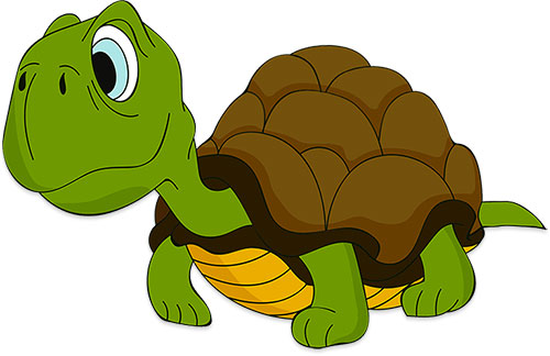Free Turtle Animations.