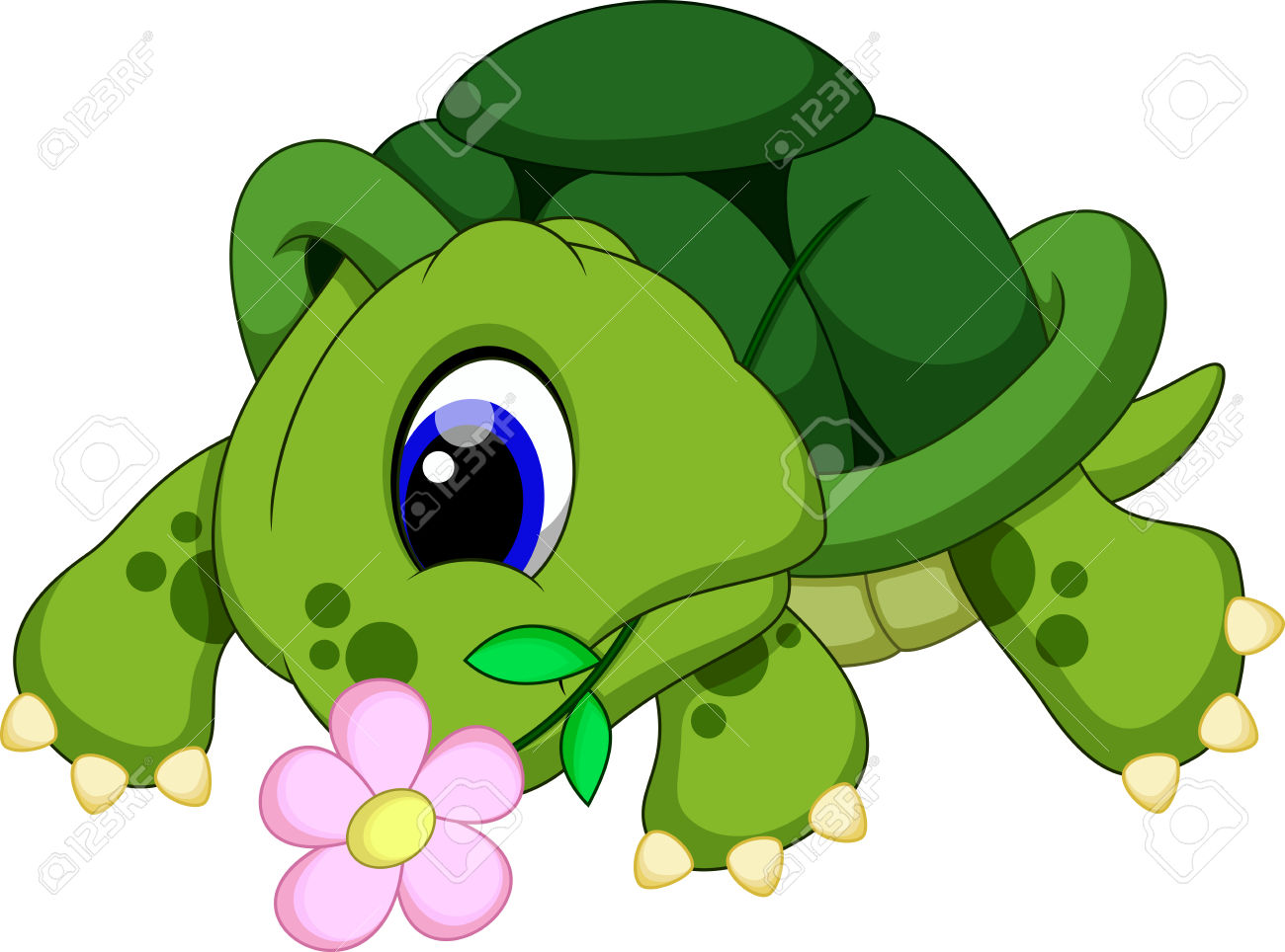 Showing post & media for Cartoon turtle with flower.