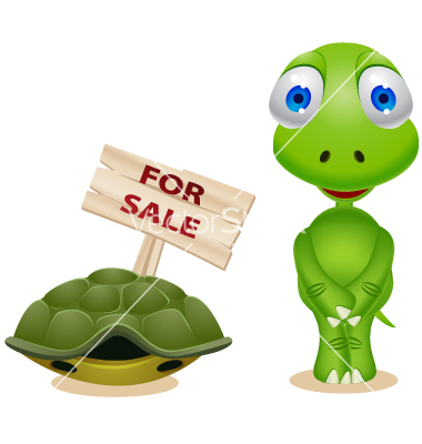 Turtle sell his shell vector by dagadu.