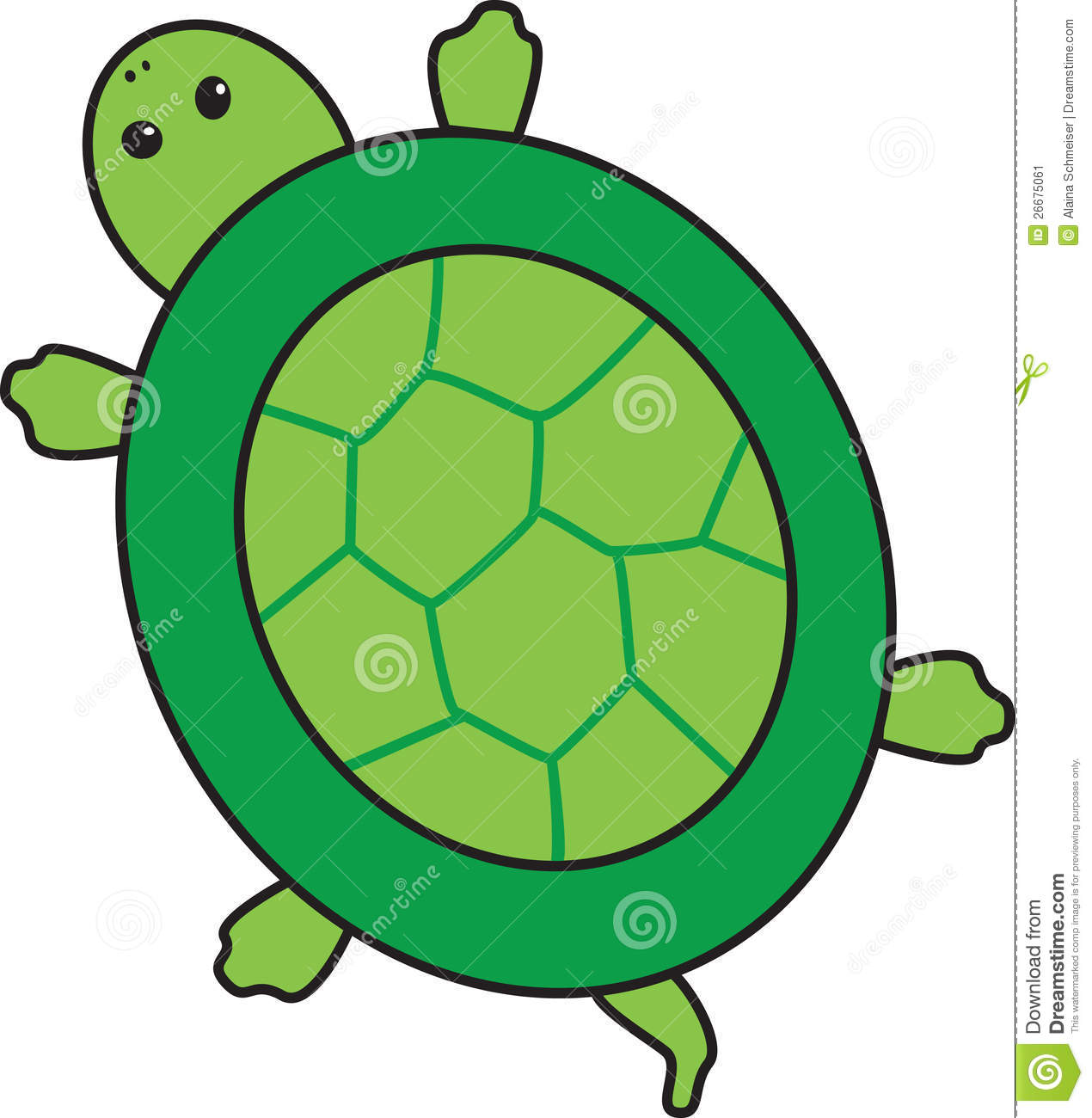 Turtle in shell clipart.