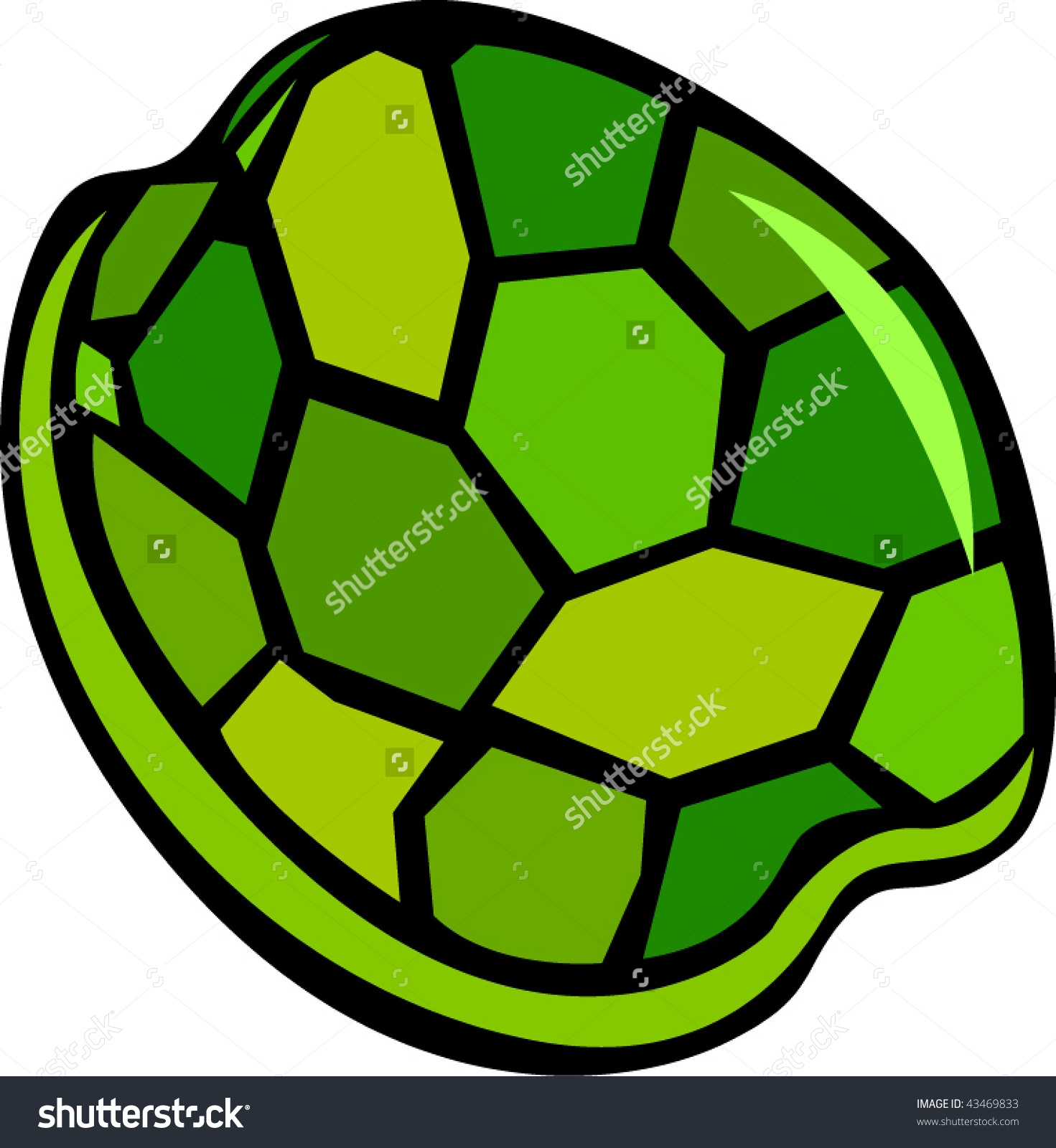 Turtle shell clip art.