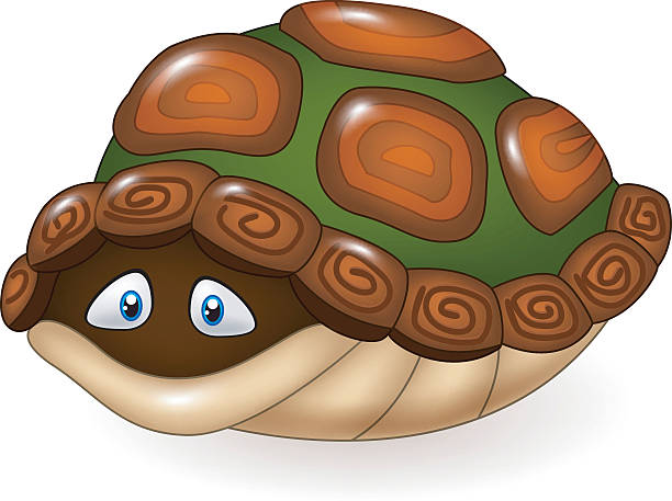 Turtle Cartoon Hiding In His Shell Clip Art, Vector Images.