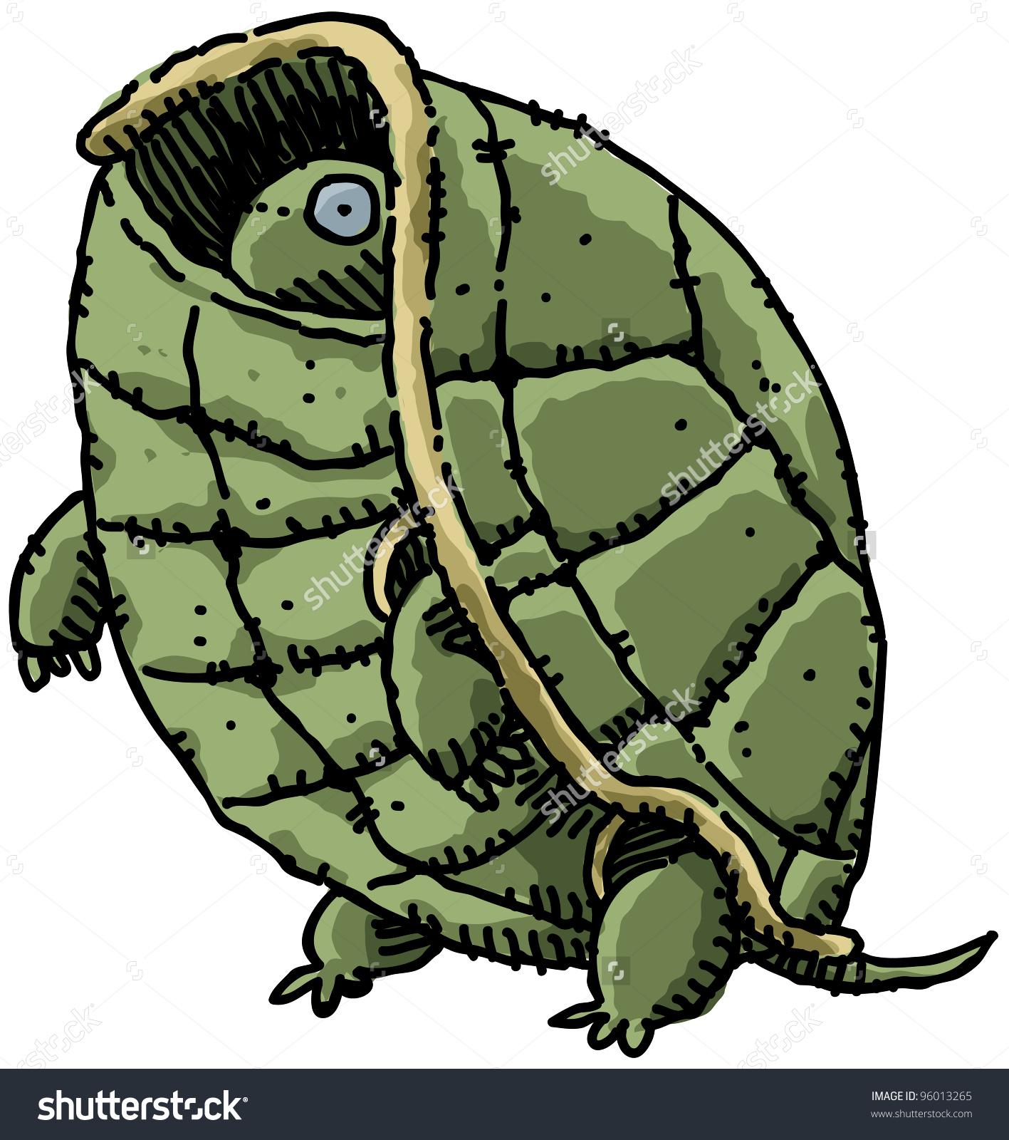 Cartoon Turtle Peeks Out Inside His Stock Illustration 96013265.