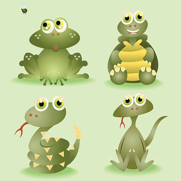 Turtle Mouth Clip Art, Vector Images & Illustrations.