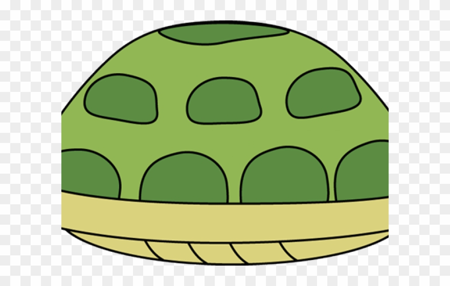 Turtle Hiding In Shell Clip Art.