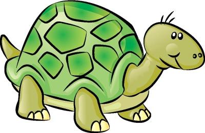 Just keep swimming. Hawksbill Sea Turtle and Spadefish.