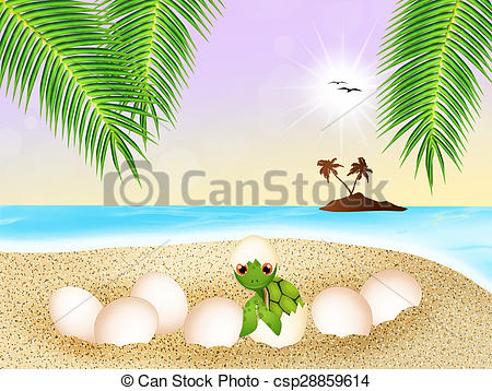 Clipart of sea turtle eggs on the beach.