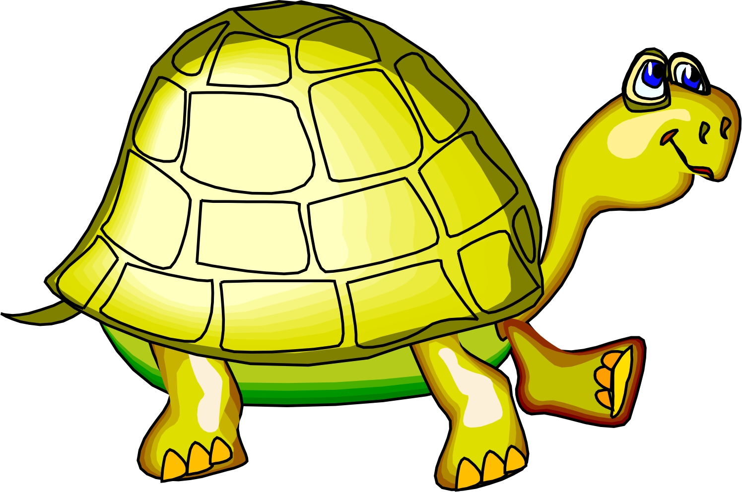 Free Cartoon Picture Of A Turtle, Download Free Clip Art.