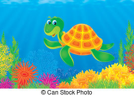 Fresh water turtle Illustrations and Clip Art. 45 Fresh water.