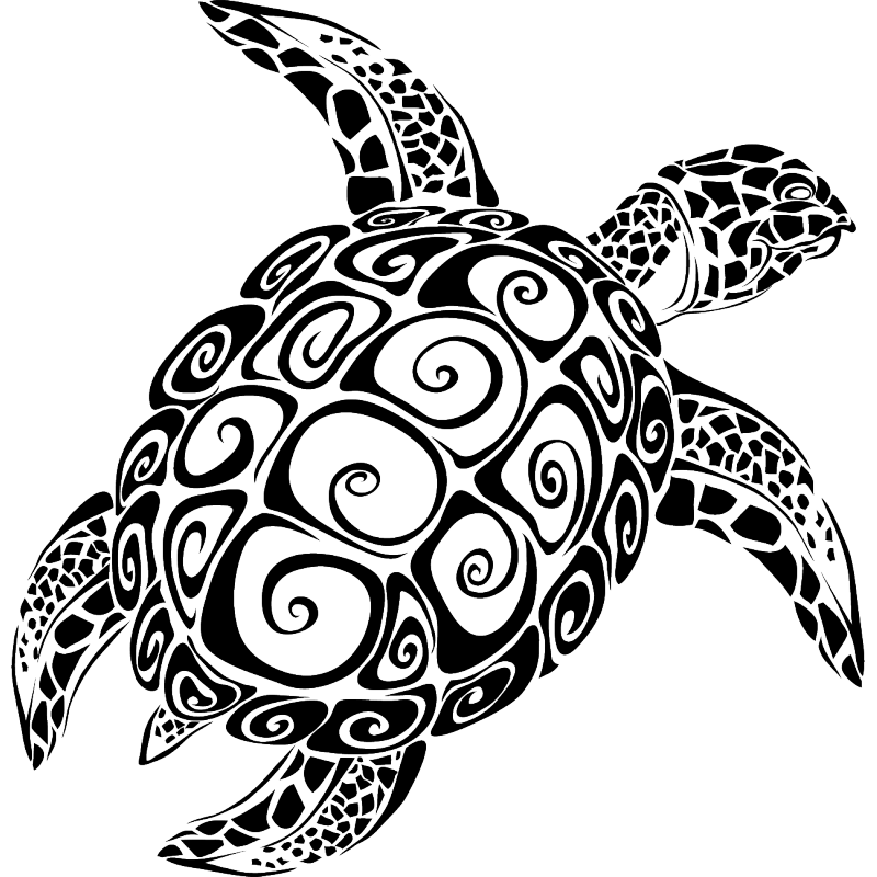 Sea turtle Vector graphics The Turtle Image.