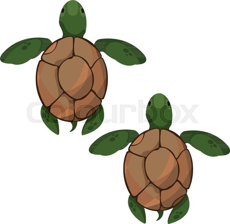 Sea turtles. Clipart on the marine.