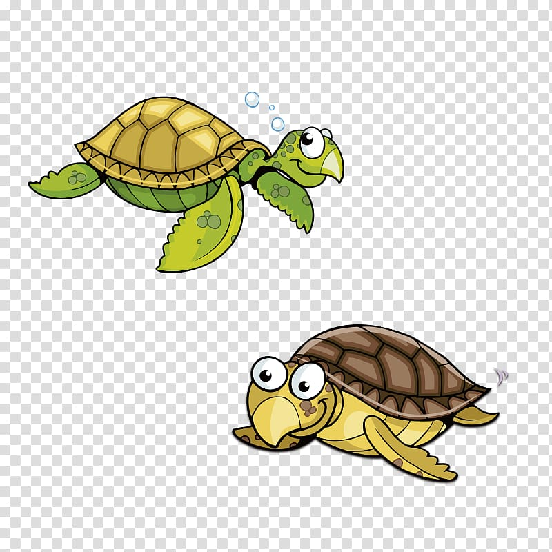 Pics of turtles clipart images gallery for free download.