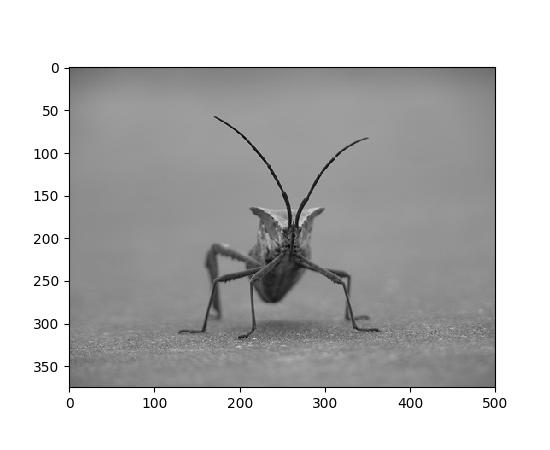 Image tutorial — Matplotlib 2.0.2 documentation.