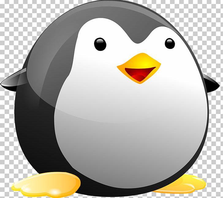 Penguin Tux Linux Bird PNG, Clipart, Beak, Bird, Clip Art.