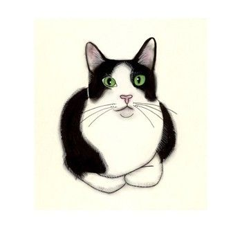 1000+ images about Tuxedo Cat on Pinterest.