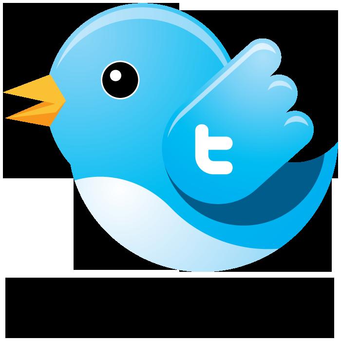 Bird Logo Vector.png.